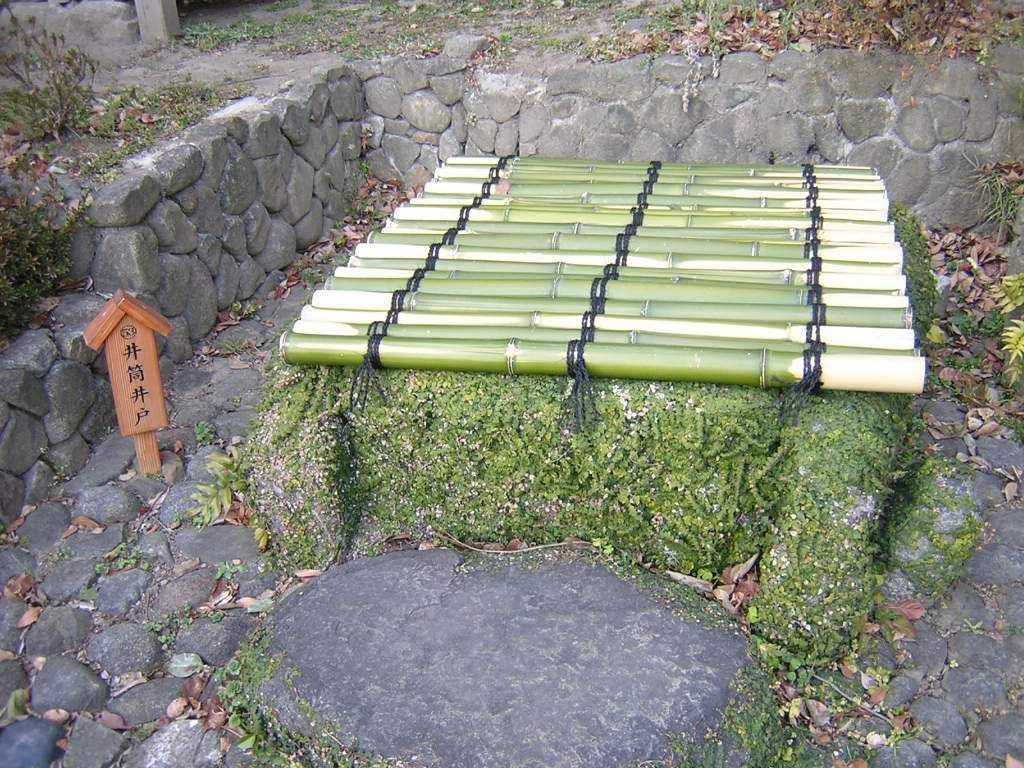清澄庭園の井戸