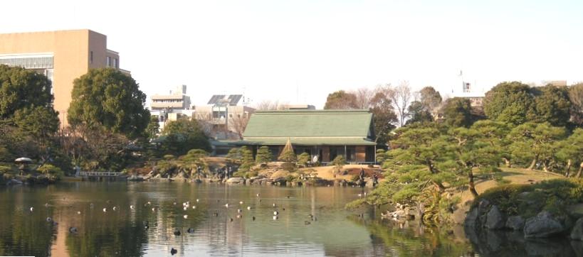 清澄庭園の庭園