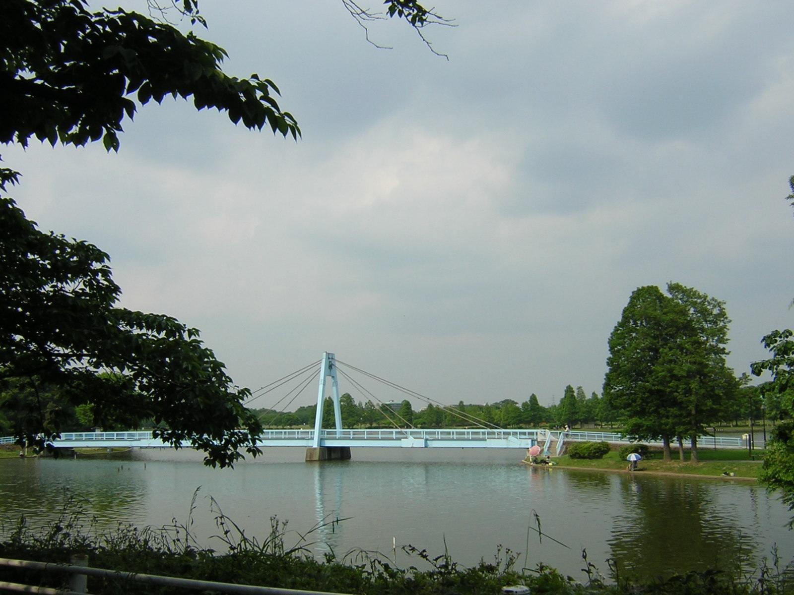 水元公園の大きな橋