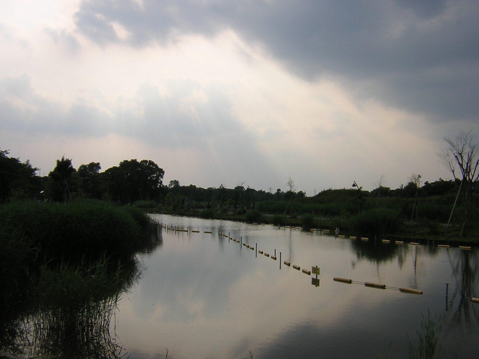 水元公園の空