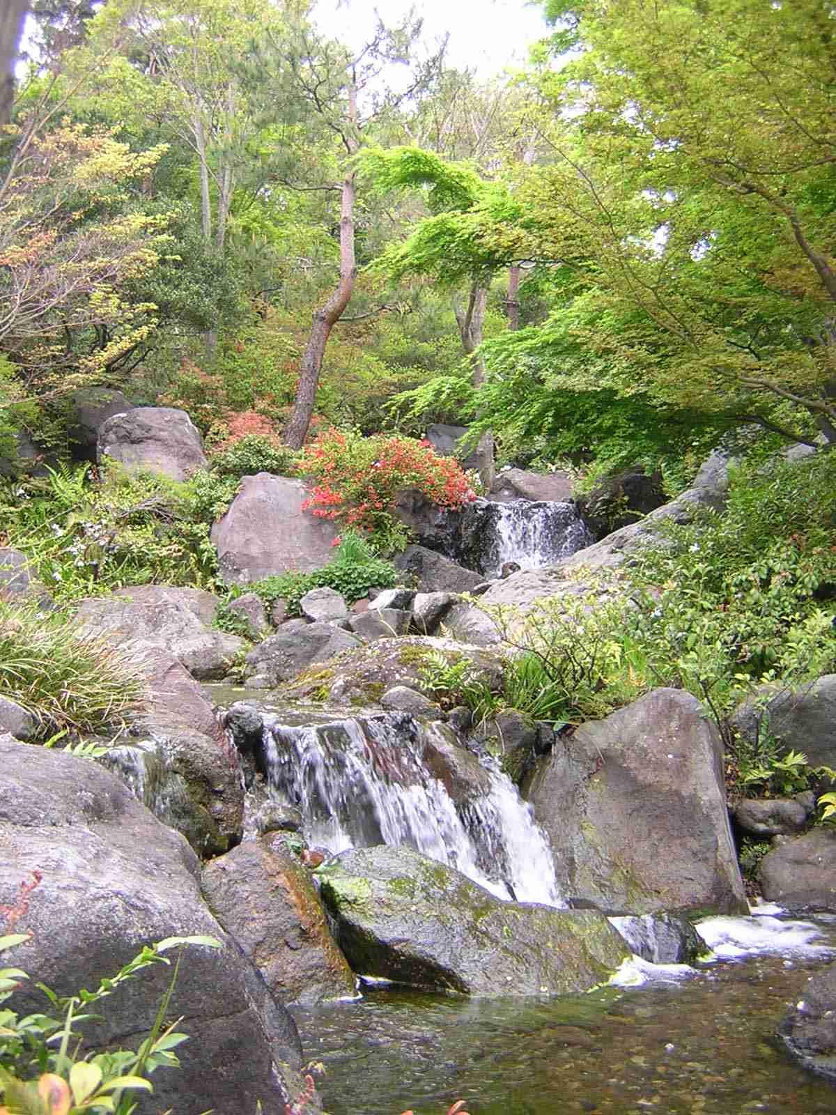 昭和記念公園の日本庭園にある滝