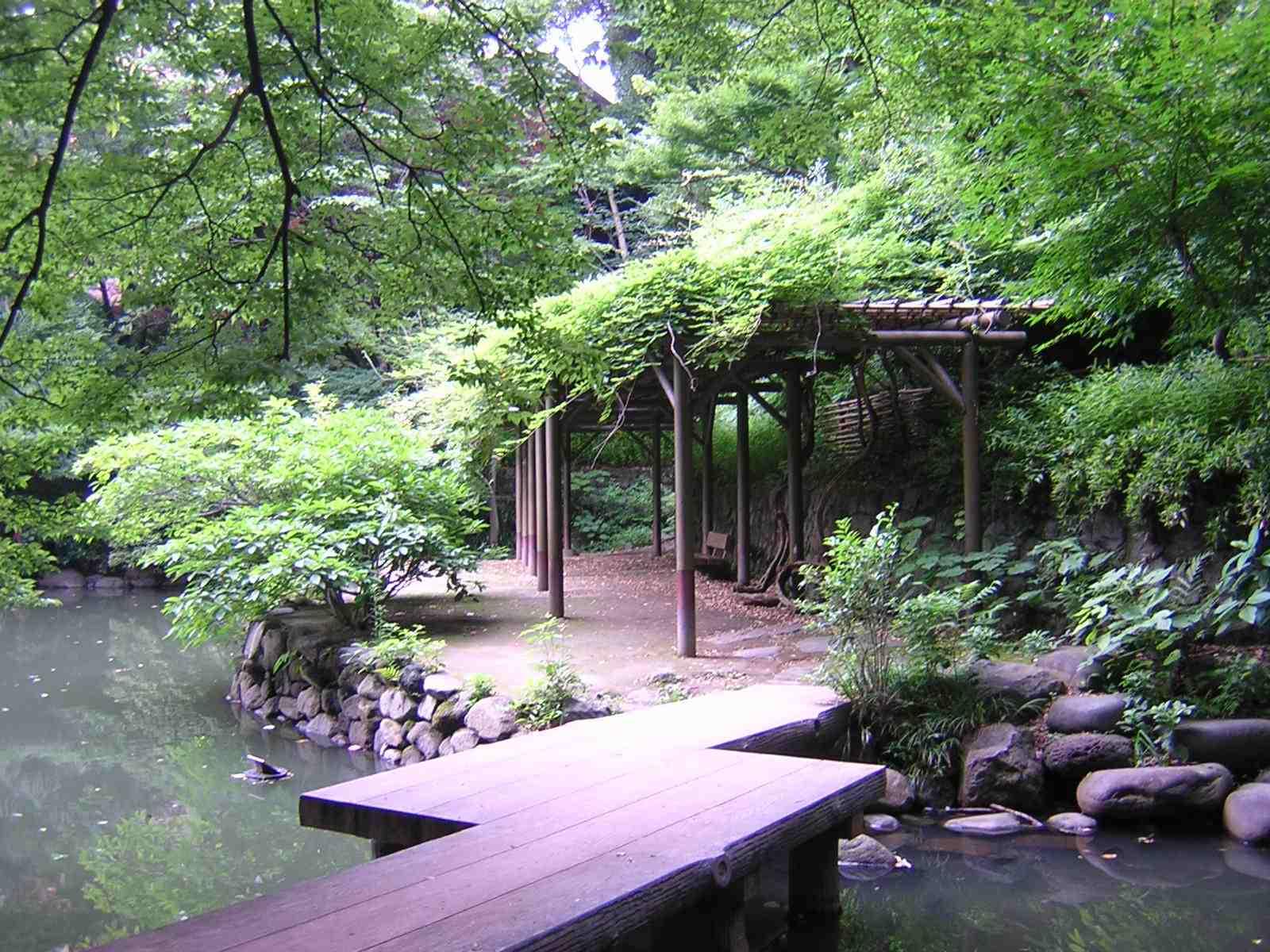 三四郎池のベンチ
